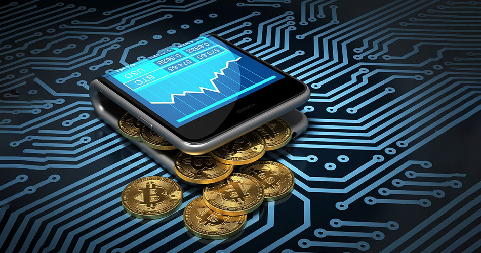 importance of crypto wallet